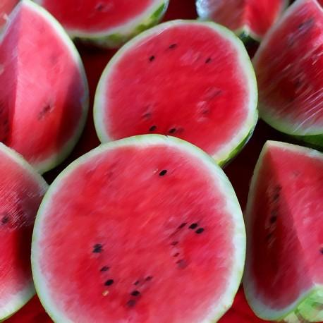Watermelon Flavour Nicotine Free e-Liquid Juice 10ml