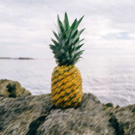 Pineapple Flavour Nicotine Free e-Liquid Juice 10ml